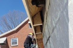 kirtland-roof-joists